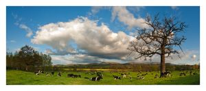 Glasbury, Black Mountains, Hay on Wye