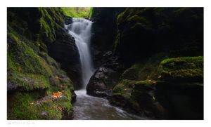 Craig Pwll Du, Bach Howey Gorge, Erwood, Builth Wells images
