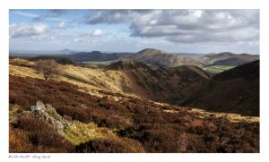 Long Mynd, Church Stretton images