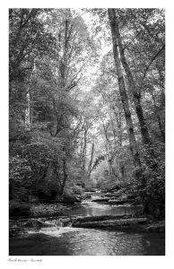 Bach Howey, Craig Pwll Du, Bach Howey Gorge, Erwood, Builth Wells images
